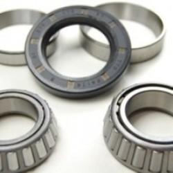 Bearing kit for Avonride 250x40 drum